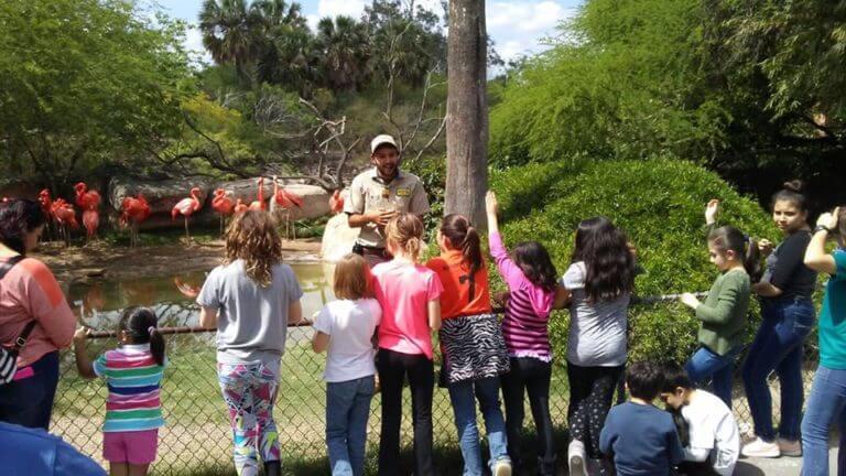Gladys Porter Zoo, USA